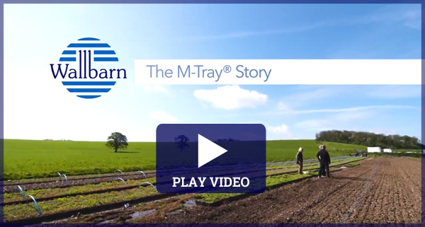 The M-Tray Story
